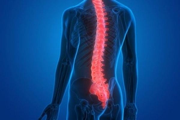 Điều trị chấn thương tủy sống bằng vật liệu sinh học mới