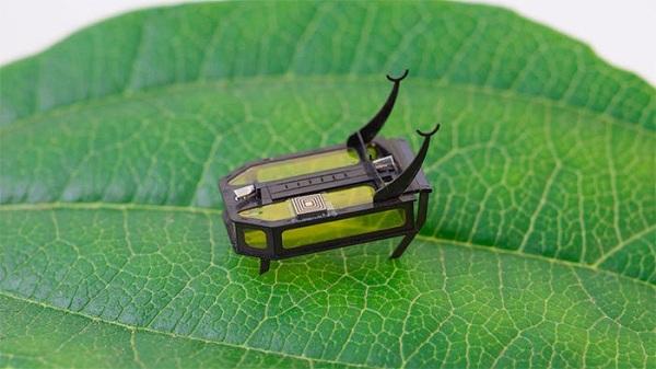 RoBeetle- robot cực nhỏ đầu tiên chạy bằng cồn